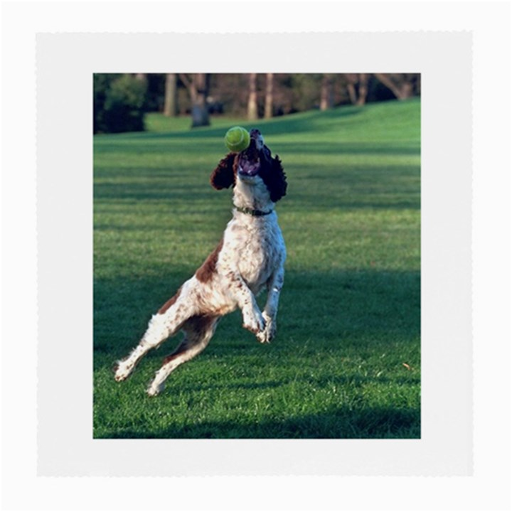 English Springer Catching Ball Medium Glasses Cloth