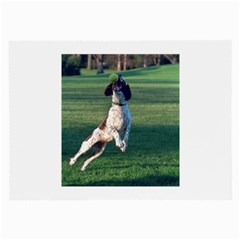 English Springer Catching Ball Large Glasses Cloth