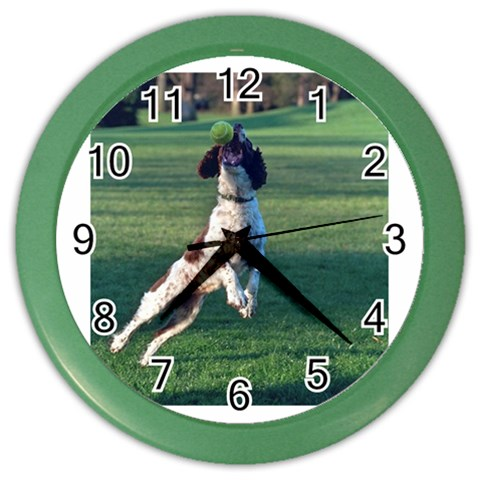 English Springer Catching Ball Color Wall Clocks