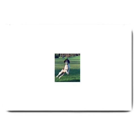 English Springer Catching Ball Large Doormat