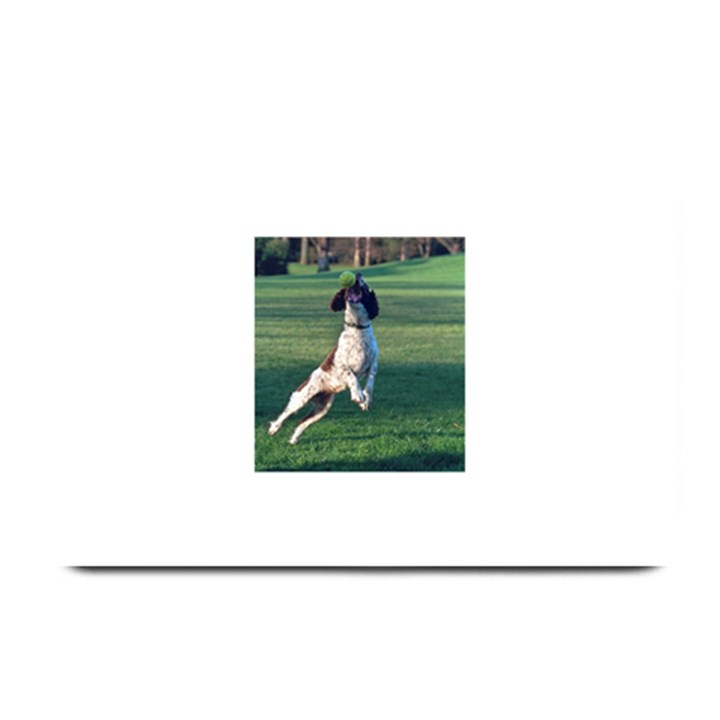 English Springer Catching Ball Plate Mats