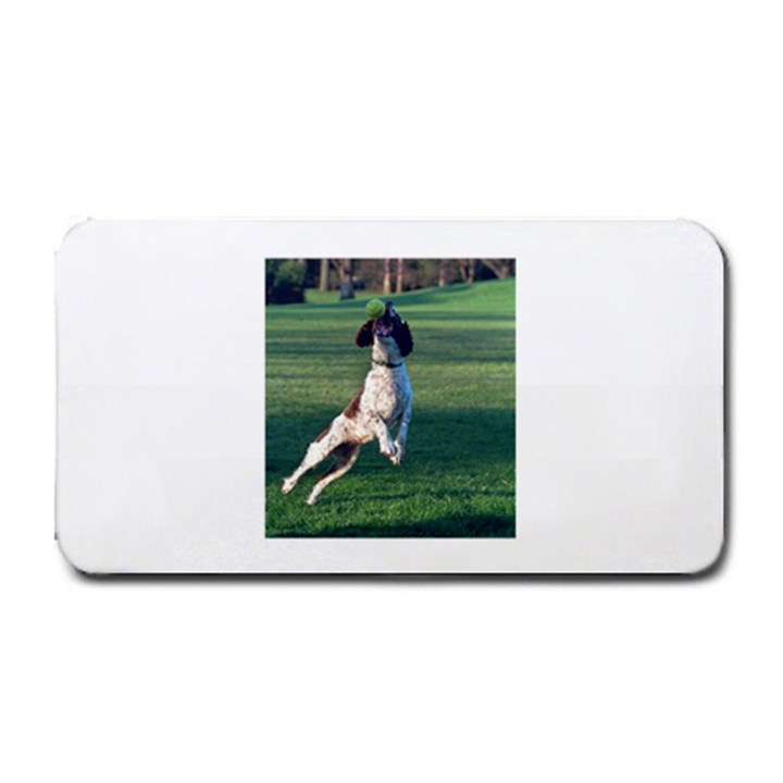 English Springer Catching Ball Medium Bar Mats