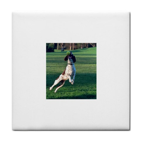 English Springer Catching Ball Face Towel