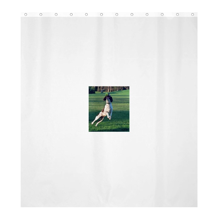 English Springer Catching Ball Shower Curtain 66  x 72  (Large)