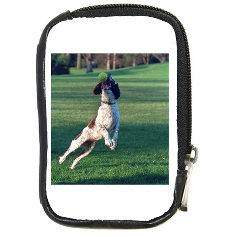 English Springer Catching Ball Compact Camera Cases