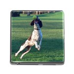 English Springer Catching Ball Memory Card Reader (Square) Front