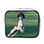 English Springer Catching Ball Mini Toiletries Bags Front