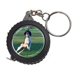 English Springer Catching Ball Measuring Tapes Front