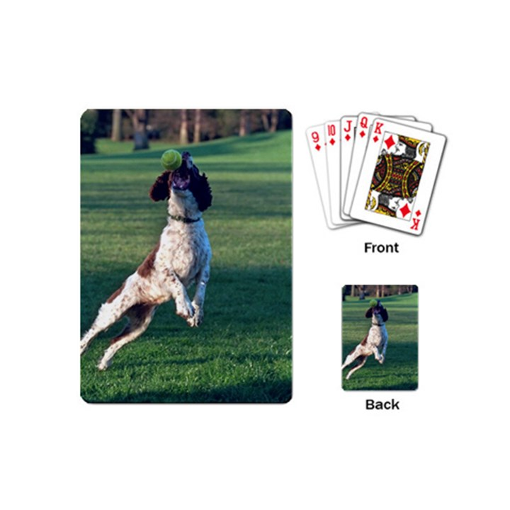 English Springer Catching Ball Playing Cards (Mini)