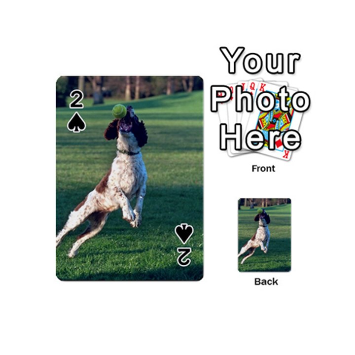 English Springer Catching Ball Playing Cards 54 (Mini)