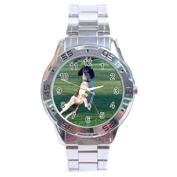English Springer Catching Ball Stainless Steel Analogue Watch