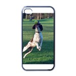 English Springer Catching Ball Apple iPhone 4 Case (Black) Front