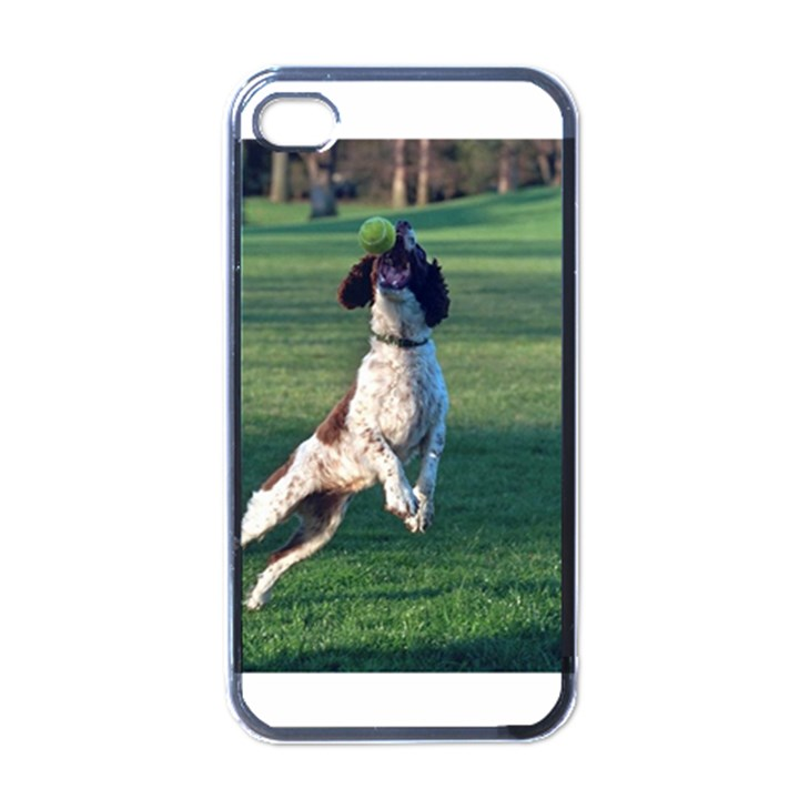 English Springer Catching Ball Apple iPhone 4 Case (Black)