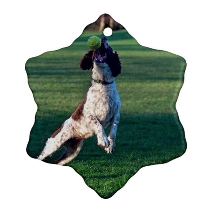 English Springer Catching Ball Ornament (Snowflake)