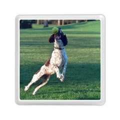 English Springer Catching Ball Memory Card Reader (Square)