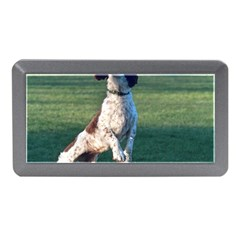 English Springer Catching Ball Memory Card Reader (Mini)