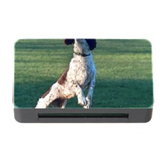English Springer Catching Ball Memory Card Reader with CF