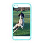 English Springer Catching Ball Apple iPhone 4 Case (Color) Front