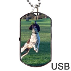 English Springer Catching Ball Dog Tag USB Flash (Two Sides)
