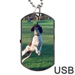 English Springer Catching Ball Dog Tag USB Flash (Two Sides)  Back