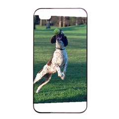 English Springer Catching Ball Apple iPhone 4/4s Seamless Case (Black)