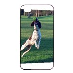 English Springer Catching Ball Apple iPhone 4/4s Seamless Case (Black) Front
