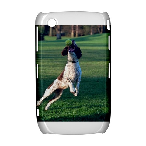 English Springer Catching Ball Curve 8520 9300