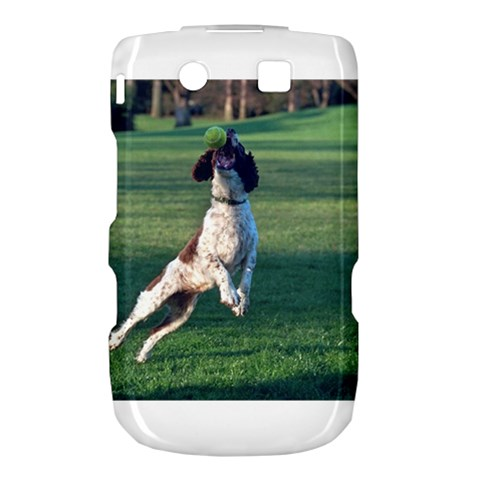 English Springer Catching Ball Torch 9800 9810