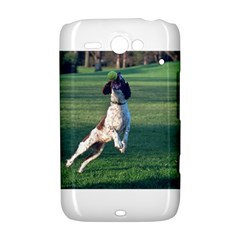 English Springer Catching Ball HTC ChaCha / HTC Status Hardshell Case