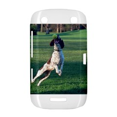 English Springer Catching Ball BlackBerry Curve 9380