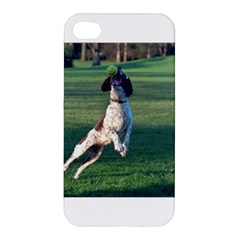 English Springer Catching Ball Apple iPhone 4/4S Premium Hardshell Case