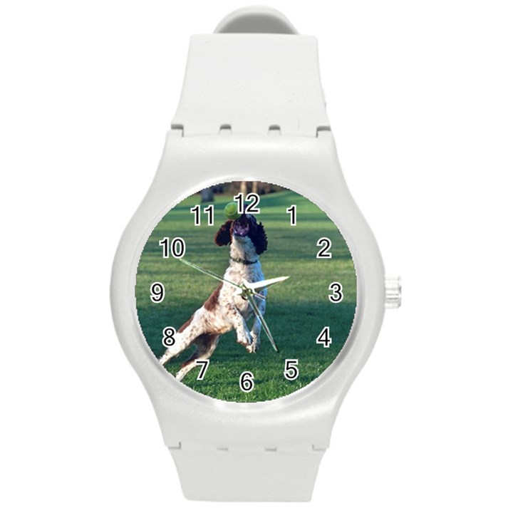 English Springer Catching Ball Round Plastic Sport Watch (M)