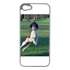 English Springer Catching Ball Apple iPhone 5 Case (Silver)