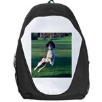 English Springer Catching Ball Backpack Bag Front