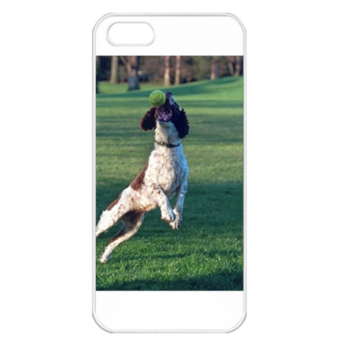 English Springer Catching Ball Apple iPhone 5 Seamless Case (White)