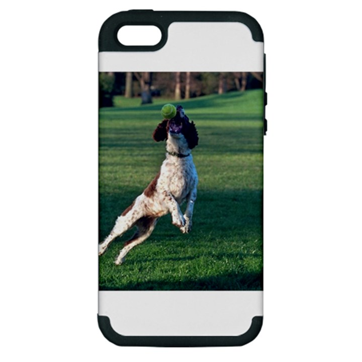 English Springer Catching Ball Apple iPhone 5 Hardshell Case (PC+Silicone)