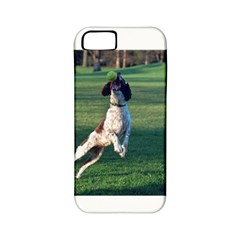 English Springer Catching Ball Apple iPhone 5 Classic Hardshell Case (PC+Silicone)