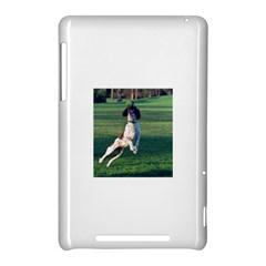 English Springer Catching Ball Nexus 7 (2012)