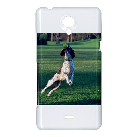 English Springer Catching Ball Sony Xperia T