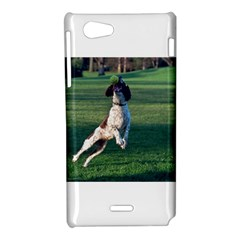 English Springer Catching Ball Sony Xperia J