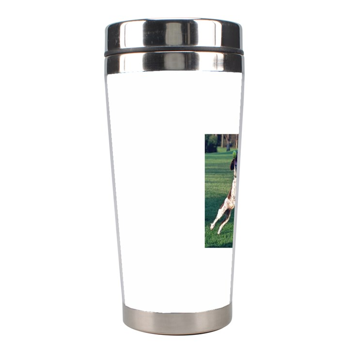 English Springer Catching Ball Stainless Steel Travel Tumblers