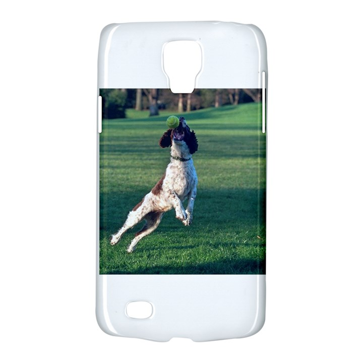English Springer Catching Ball Galaxy S4 Active
