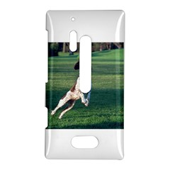English Springer Catching Ball Nokia Lumia 928