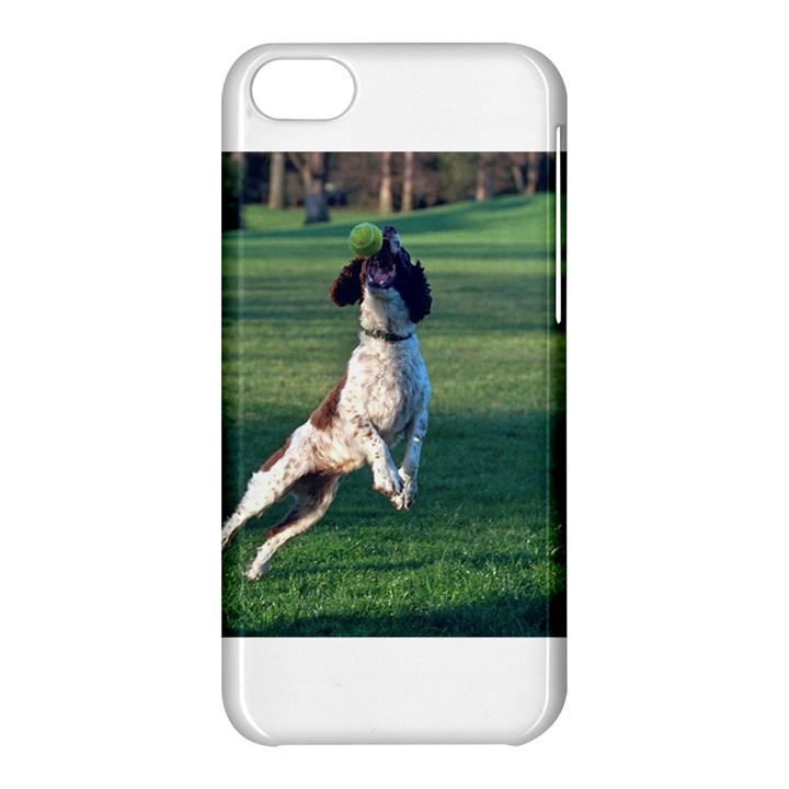 English Springer Catching Ball Apple iPhone 5C Hardshell Case