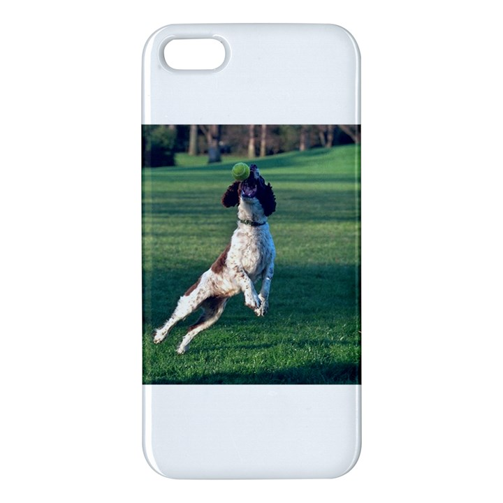 English Springer Catching Ball iPhone 5S/ SE Premium Hardshell Case