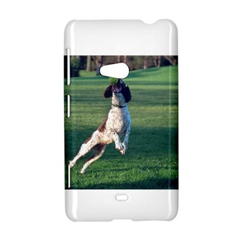 English Springer Catching Ball Nokia Lumia 625