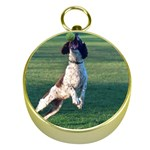 English Springer Catching Ball Gold Compasses Front
