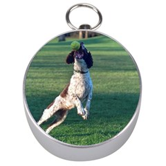 English Springer Catching Ball Silver Compasses