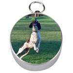 English Springer Catching Ball Silver Compasses Front