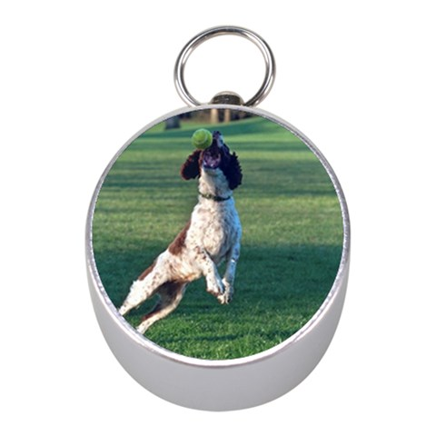 English Springer Catching Ball Mini Silver Compasses